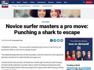 Novice surfer masters a pro move: Punching a shark to escape - Fox News
