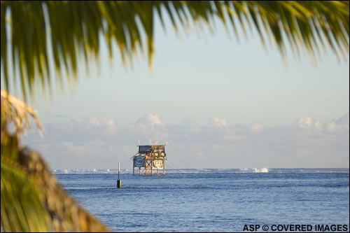 Billabong Pro Teahupoo Tower.  Pic Credit ASP Tostee